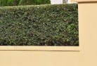 Havilah VIC Decorative fencing 30